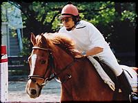 ▲アシェンダ乗馬学校にて横浜市民馬術大会が今年も行われ、参加しました。
